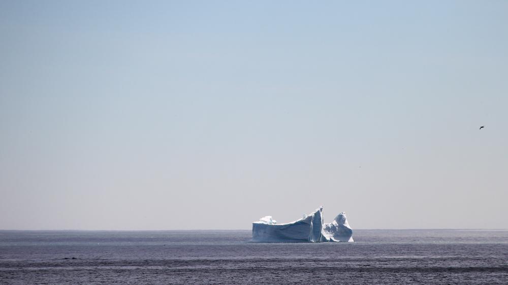 Escaping Antartica